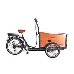 Altec-Castor-Electrische-Bakfiets-Driewieler-Disc-Brakes-375Wh-RIJKLAAR-GELEVERD-NIEUW.jpg